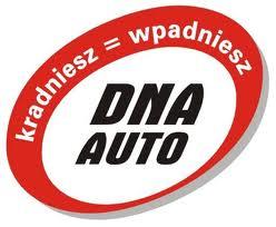 DNA auto kielce